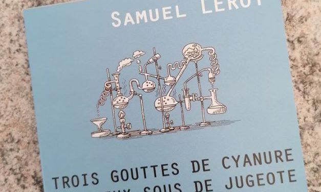Samuel Leroy, « Objets inanimés, avez-vous donc une âme ? »